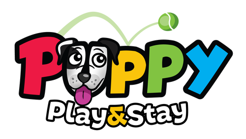 Puppy Play&Stay